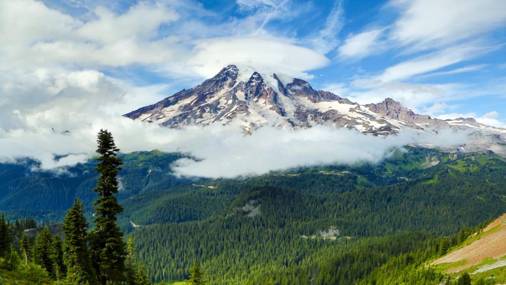 Mount Rainier by Mick Thompson
