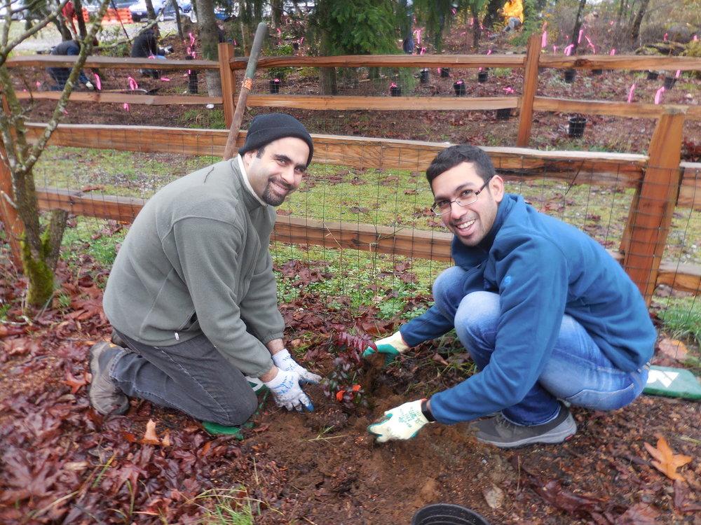 Planting3.jpg