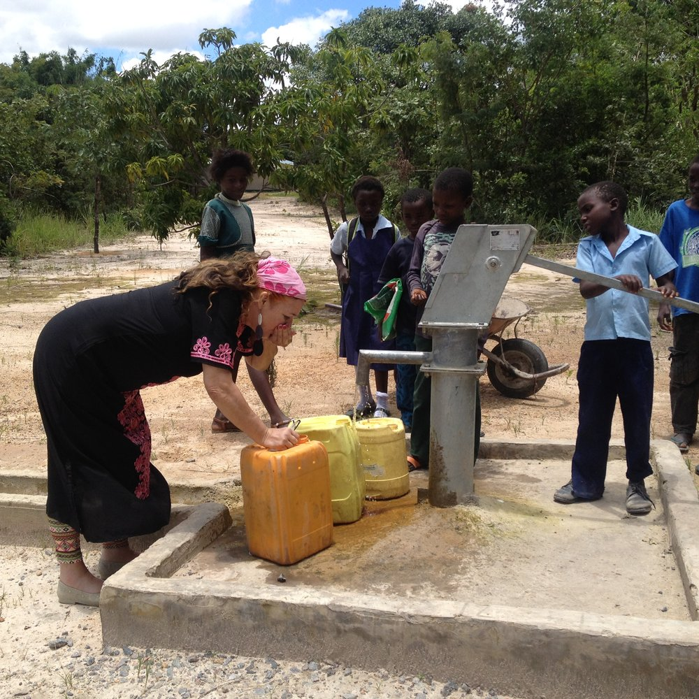 February - Partnered with Rotary clubs in Mississauga to put 20 clean water wells in Mbayi.