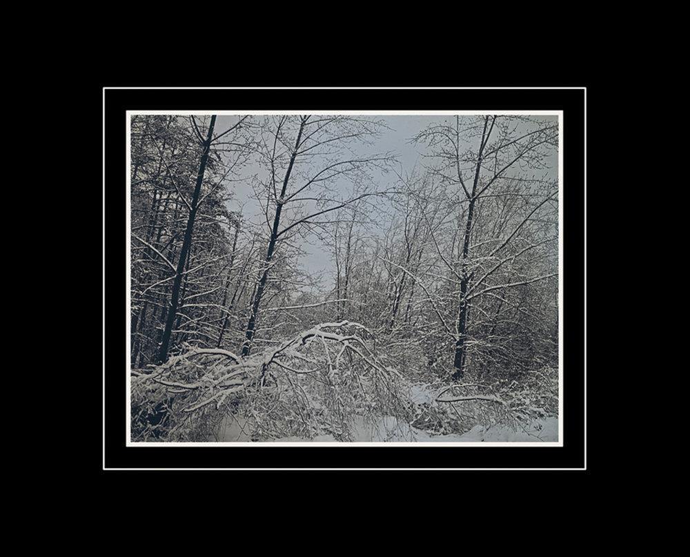 Winter Scene Toronto