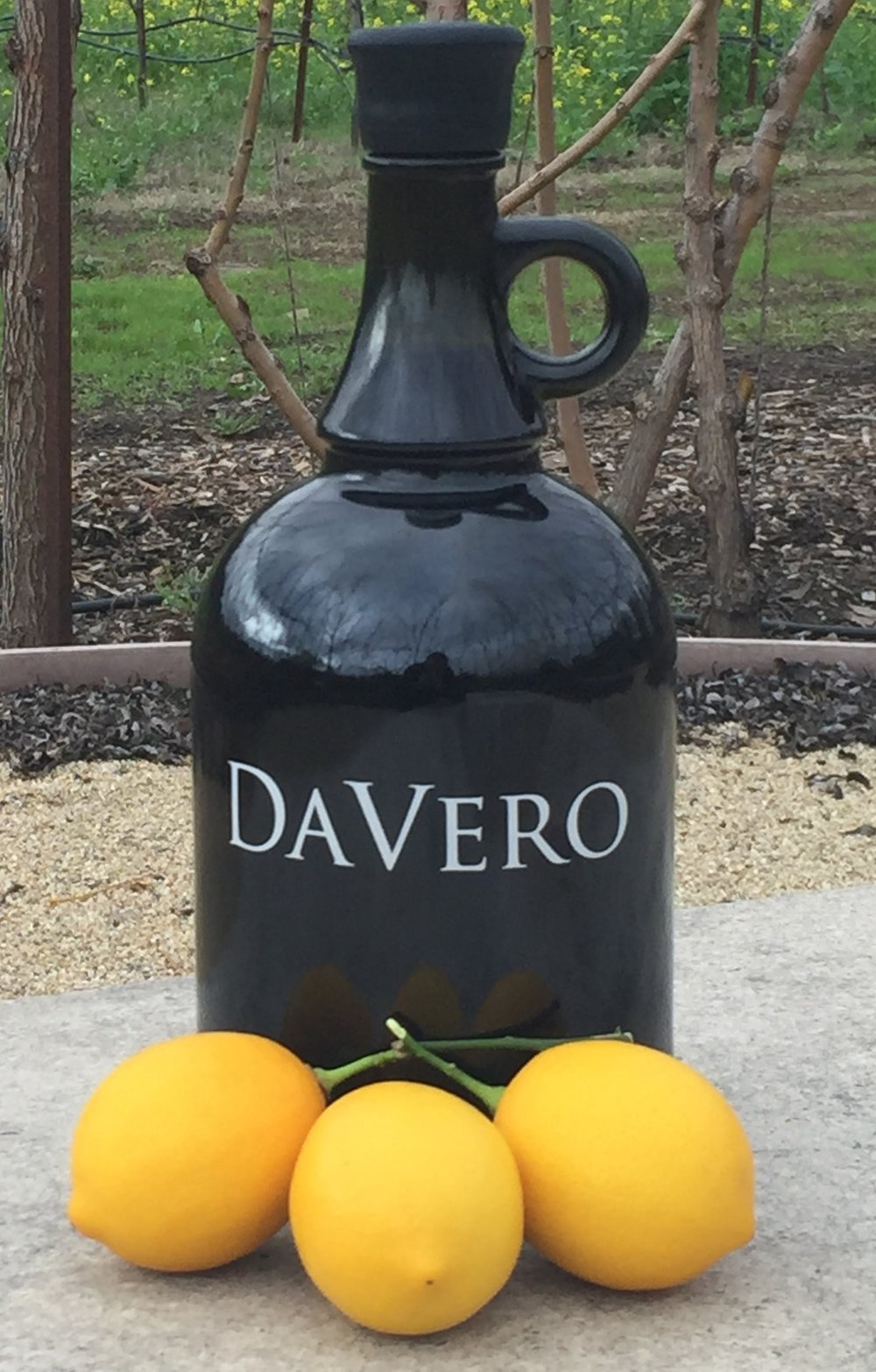 Jug Wine On Tap At DaVero