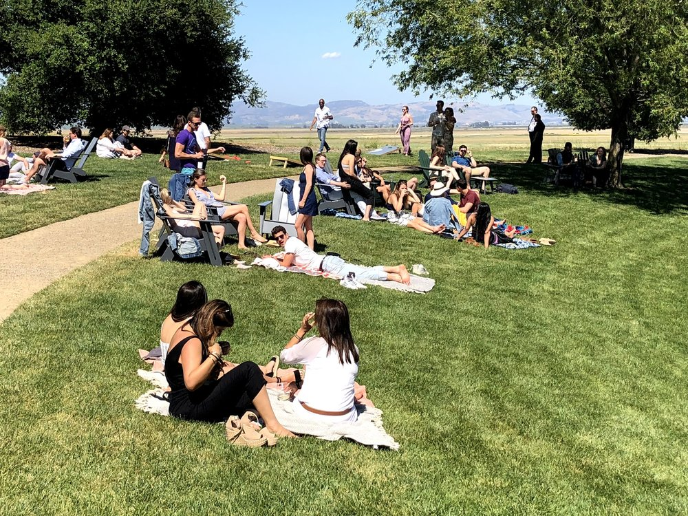 Picnic At Ram's Gate Winery