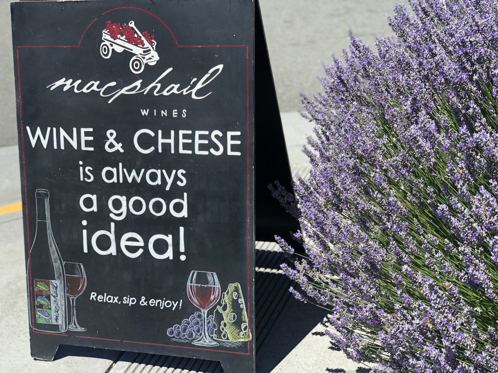 MacPhail Winery Cheese Tasting