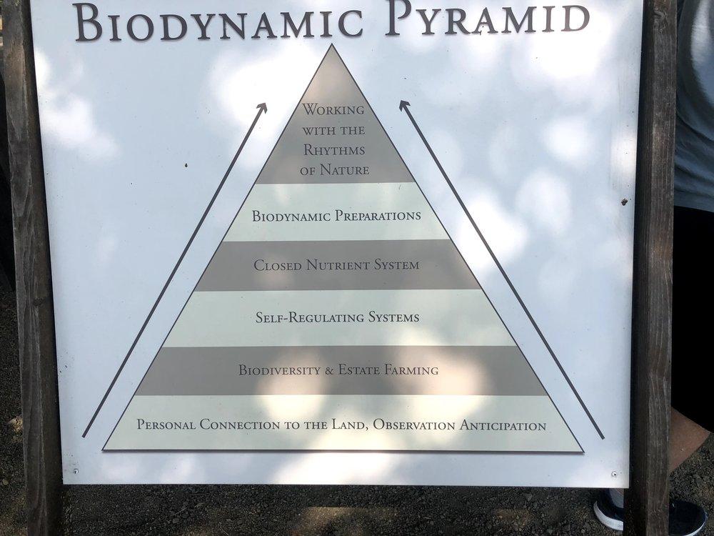 Biodynamic Pyramid