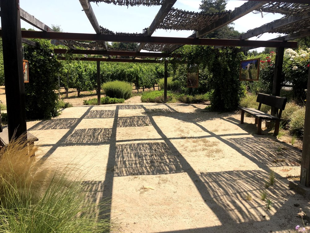Vineyard Views At Benzinger Winery