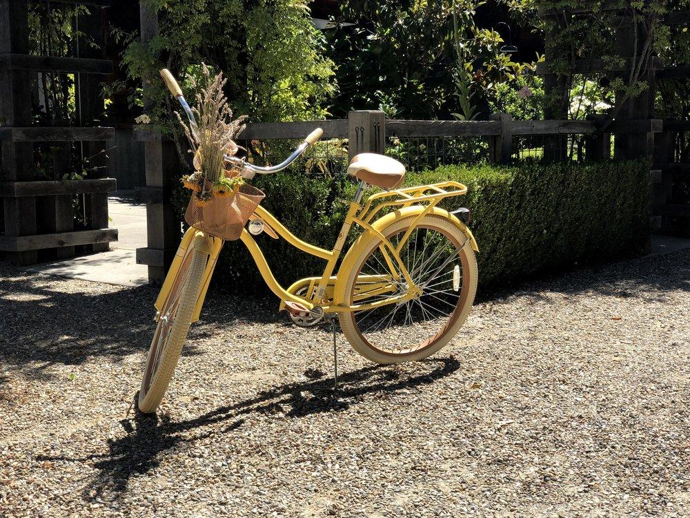 Parisian Bicycle At 32 Winds