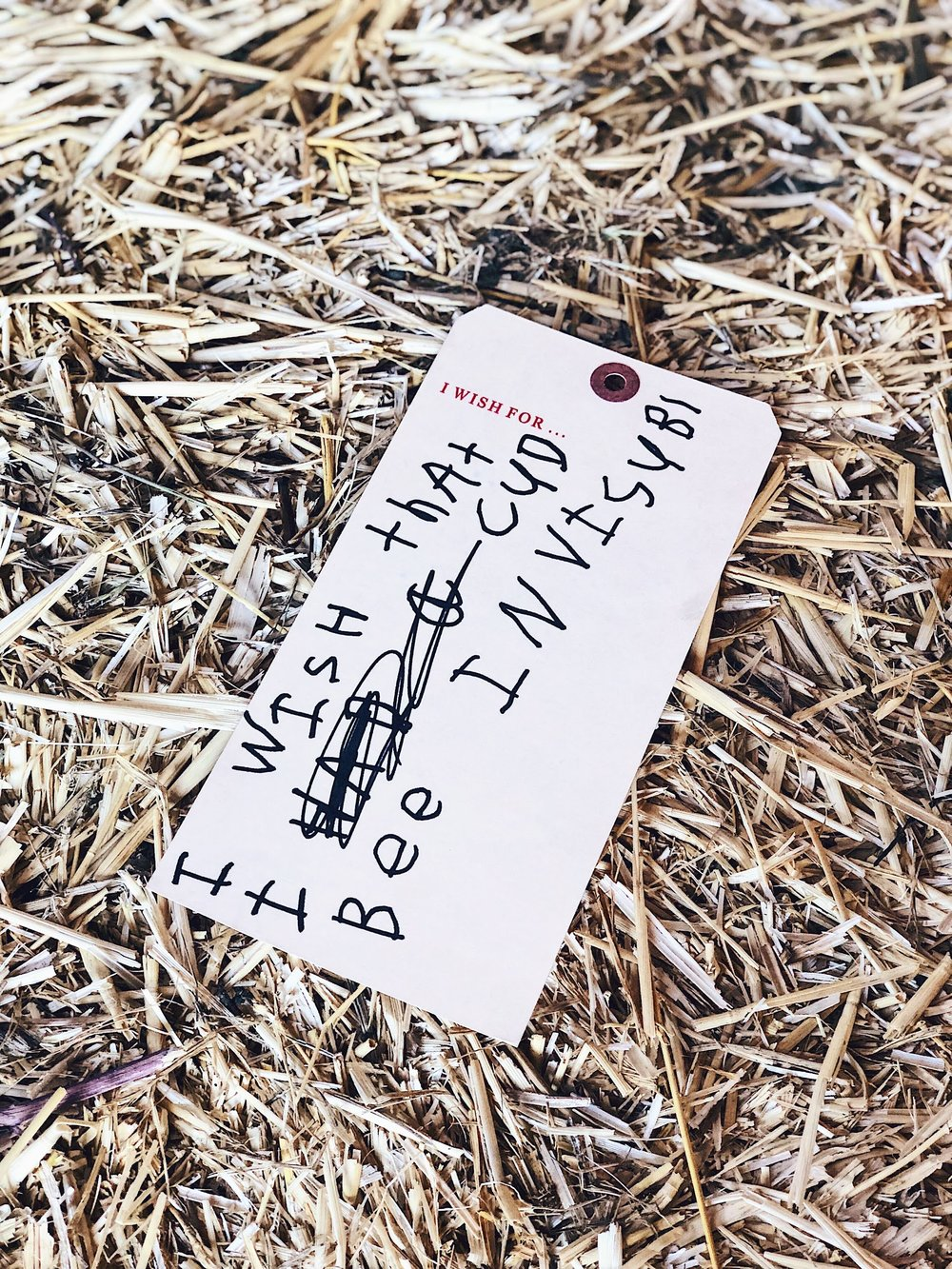 Wishes For Belden Barns Wishing Tree