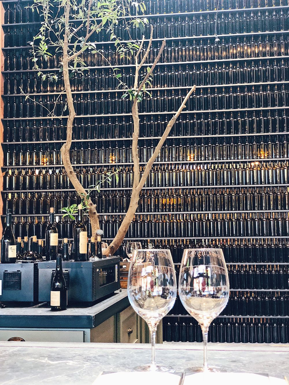 Wine Bottle Wall At Pangloss Cellars