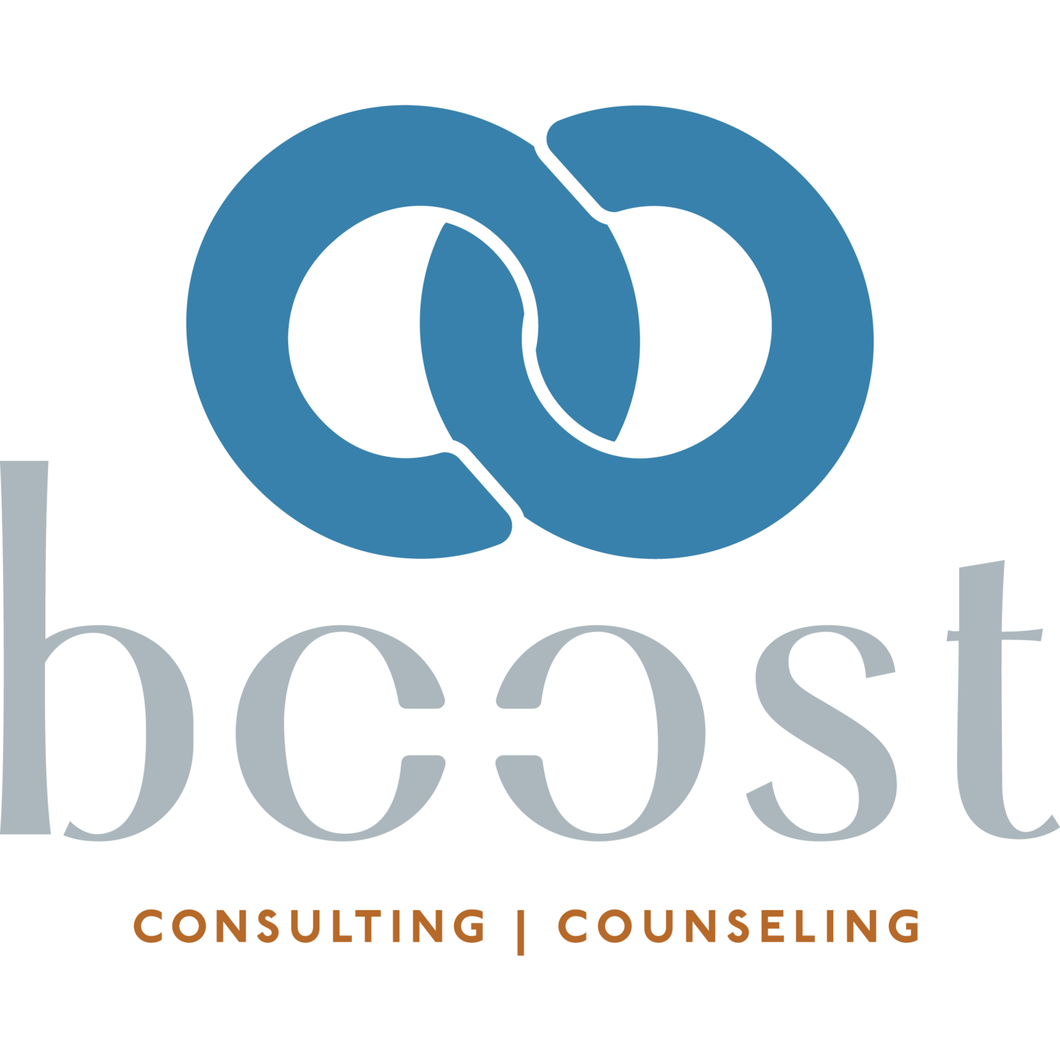 Boost Counseling
