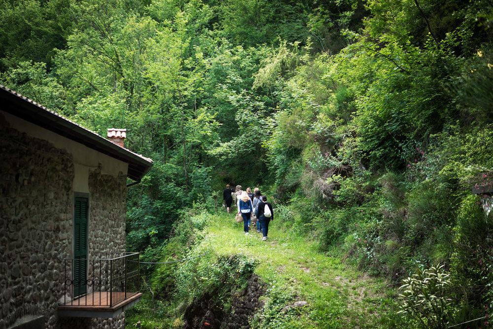 Tuscany_siforellana.jpg