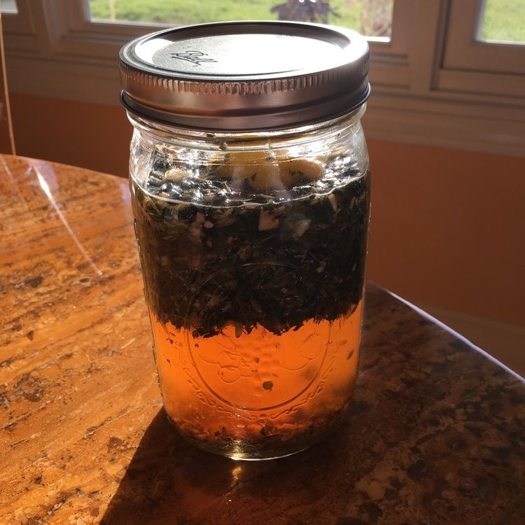 NETTLE LEAF, OATSTRAW, AND LEMON HOT WATER INFUSION