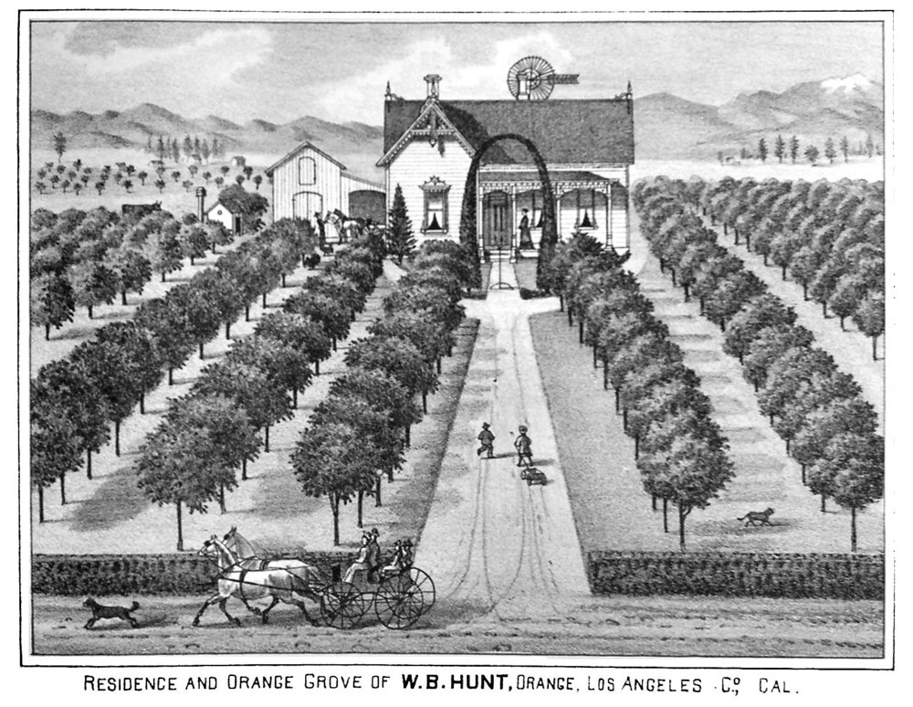 Page 146a Hunt 1880.jpg