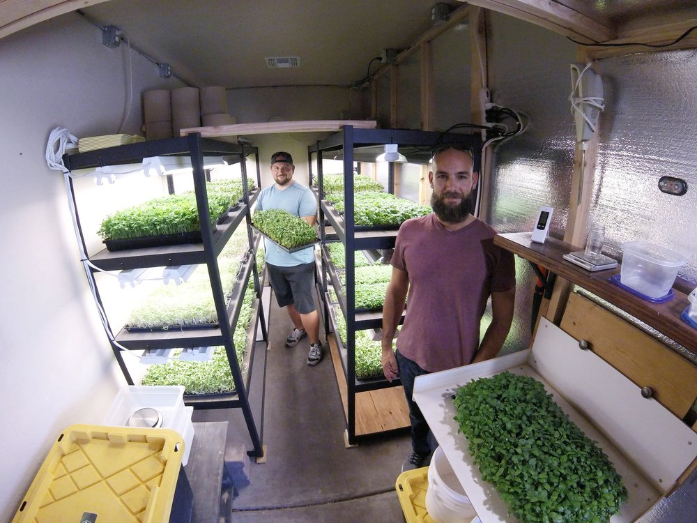 Featured in The Groves Report - 6/1/18 - Lynette Carrington of Nearby News sat down with Nick and Jared from Mesa Micro Farm to learn more about fresh, local produce, and sustainable farming practices.Click HERE to read the full story!