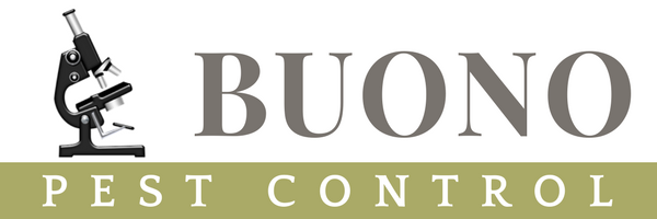 Professional Pest and Rodent Control Services in MA and RI | Buono Pest Control | Belmont MA