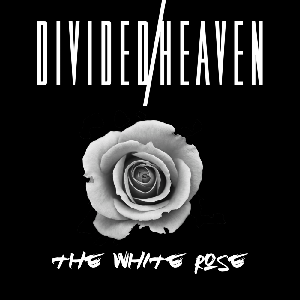 white rose cover.png