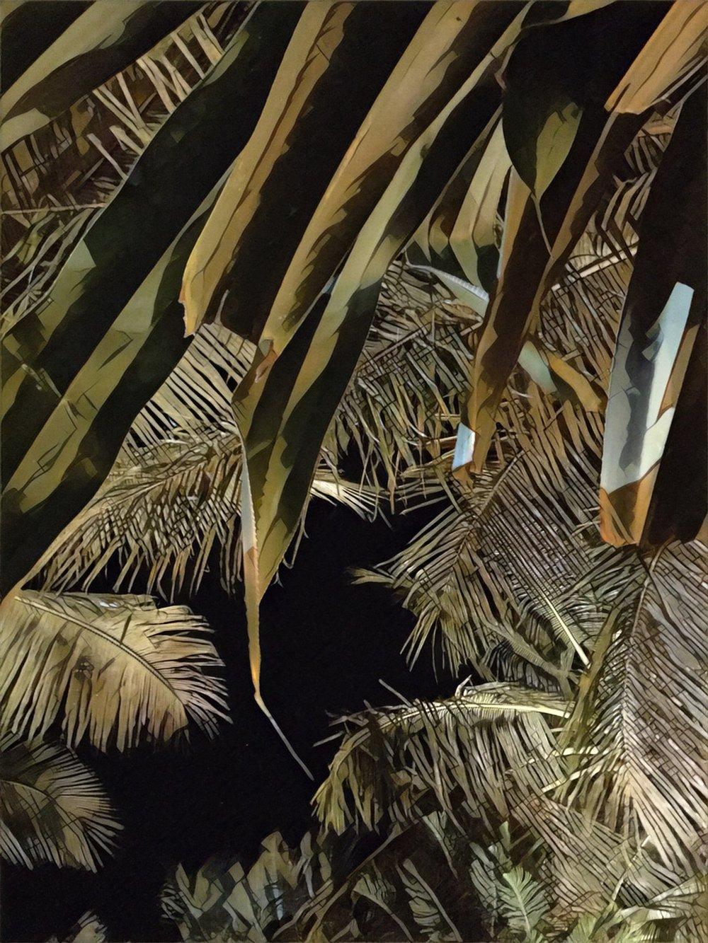 Caribbean Nocturne.jpg