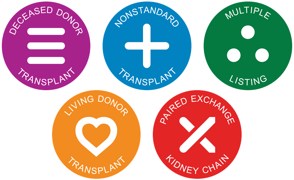 Icons representing the five strategies for receiving a kidney transplant bridged the Destination Transplant logo and color-coordinated educational materials.