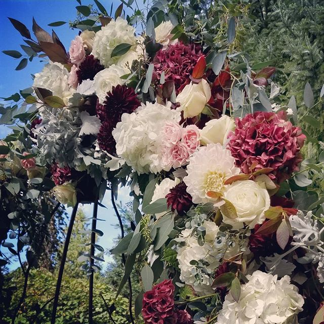 Today's fall storm cleared in time for a lovely outdoor wedding @evergreengardensvenue #Botanikal #weddingflowers #dahlias