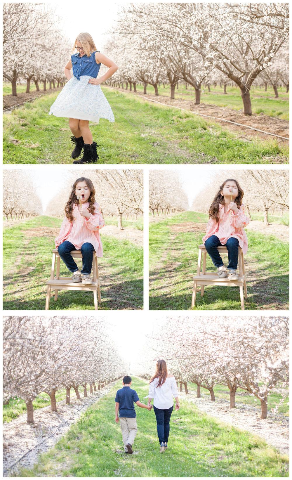 fresno ca blossom photos