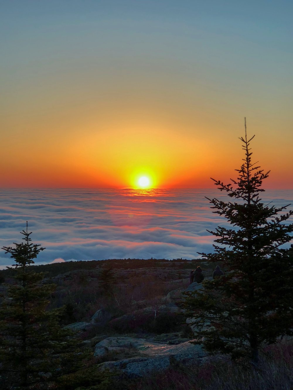sunrise from cadillac mountain.JPEG