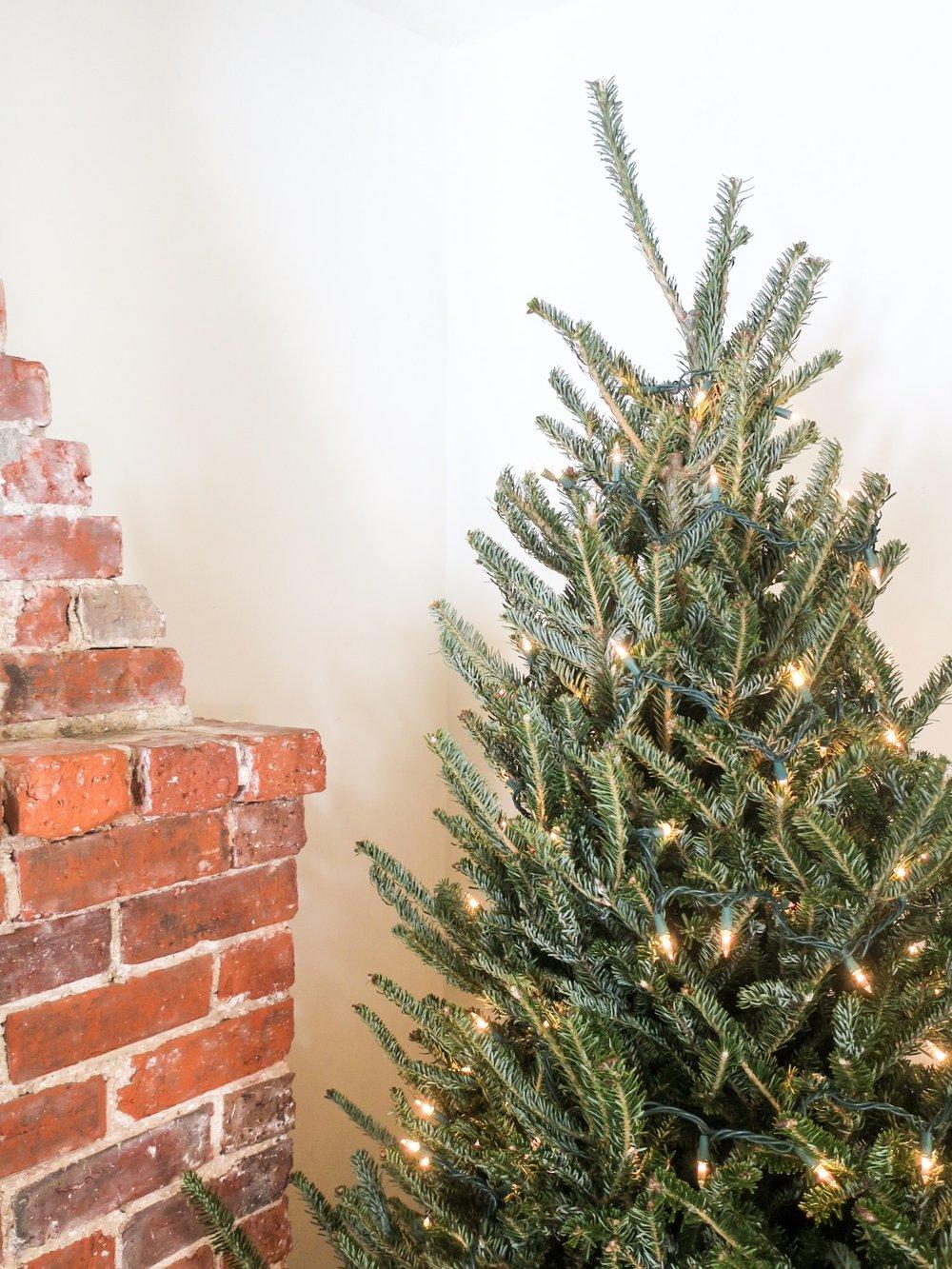 minimalism christmas.JPEG