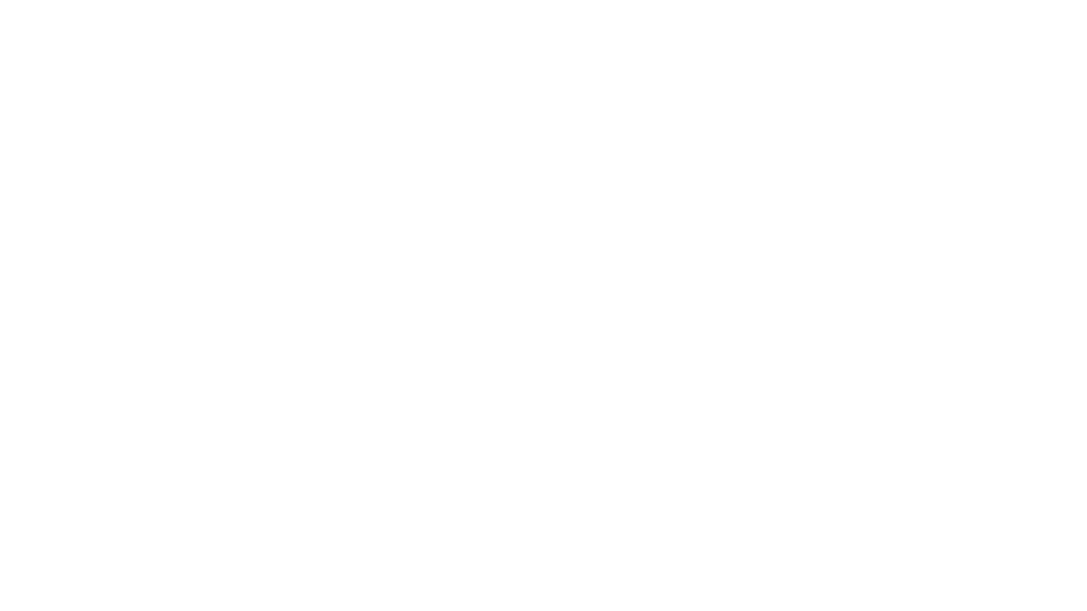 City-Light-Logo-white.png