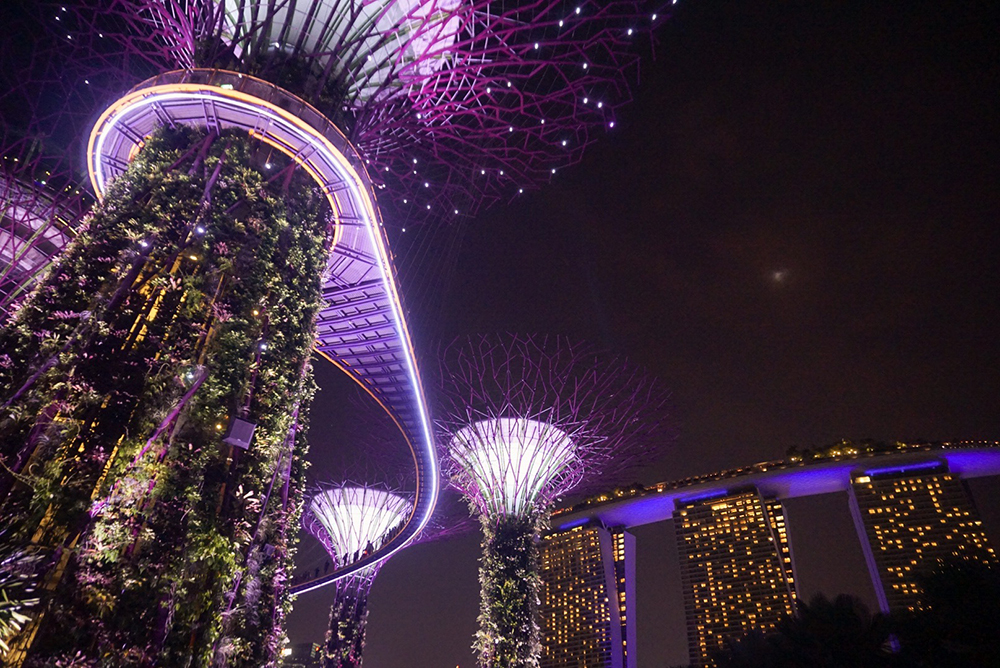 Gina Maldonado - cocogigidesing - Singapore_6858.jpg
