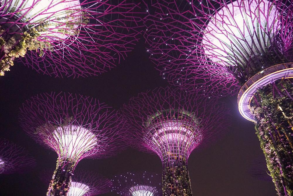 Gina Maldonado - cocogigidesing - Singapore_6855.jpg