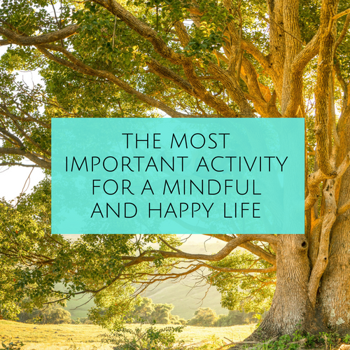 THE MOST IMPORTANT ACTIVITY FOR A MINDFUL AND HAPPY LIFE blog post.png