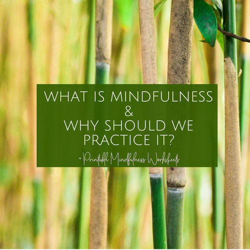 WHAT IS MINDFULNESS & WHY SHOULD WE PRACTICE IT blog post.png