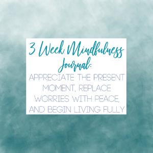 3 week mindfulness Journal logo.png