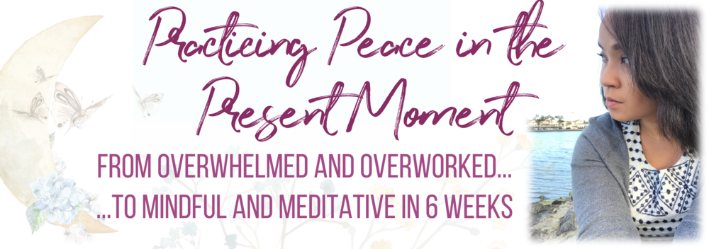 Practicing Peace in the Present Moment SP BANNER 2.png