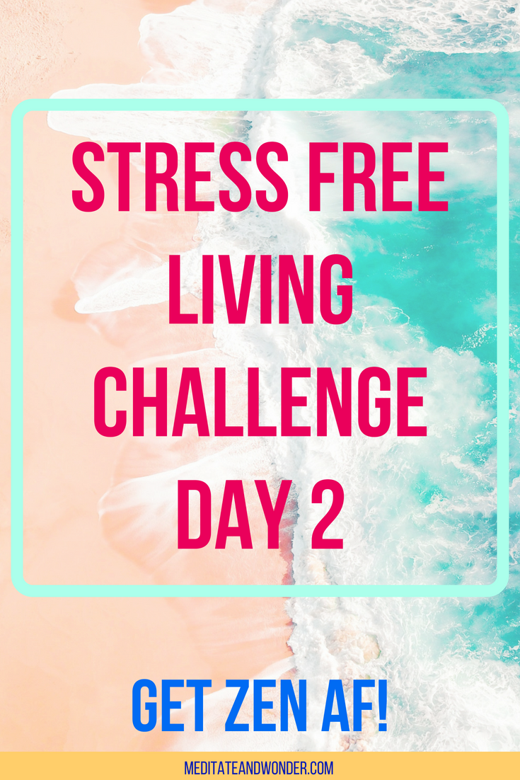 5 day stress-free living challenge day 2.png