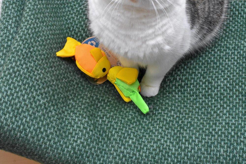 plastic-free-pets-toys