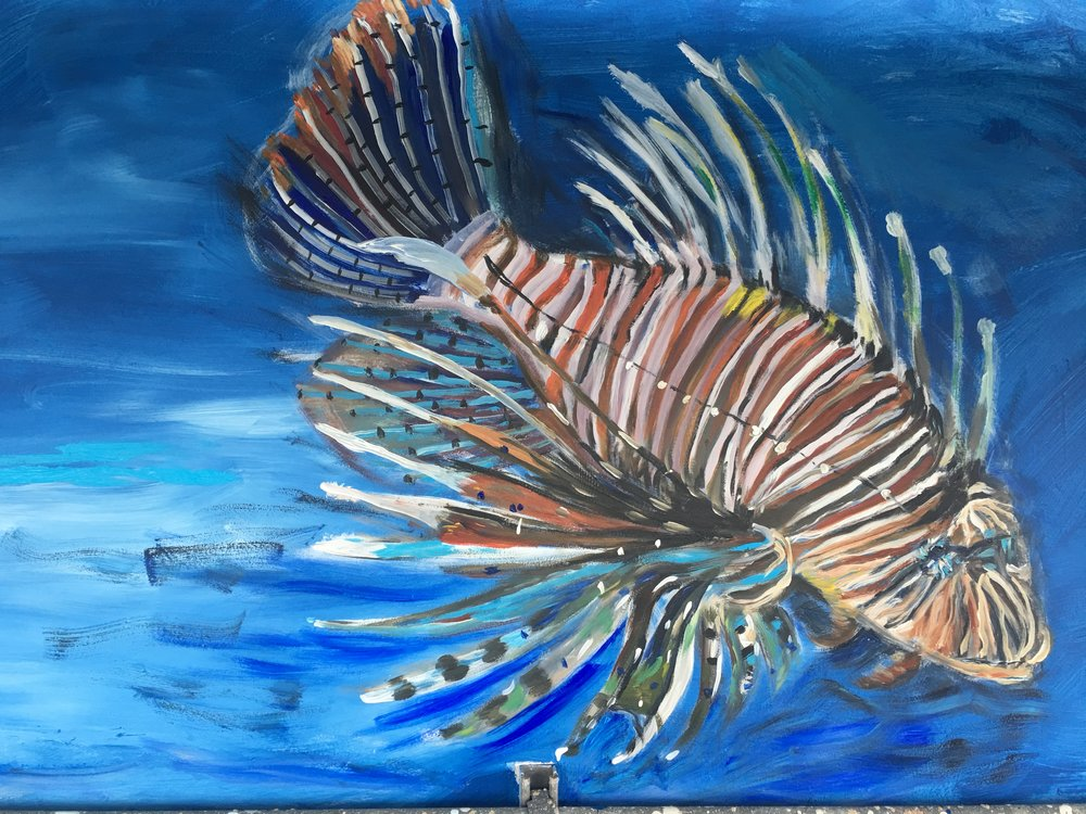 The beauty of one of four Lion fishes - beautiful but deadly...