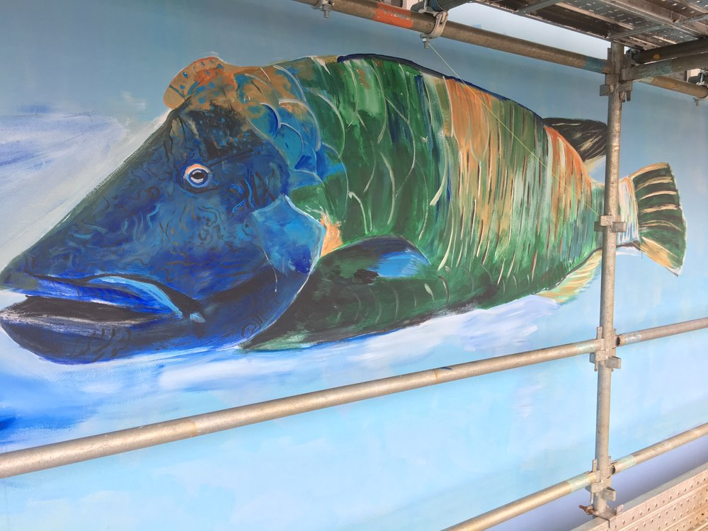 Giant grouper. I was thrown into the wonders of such beautiful creatures in this project.