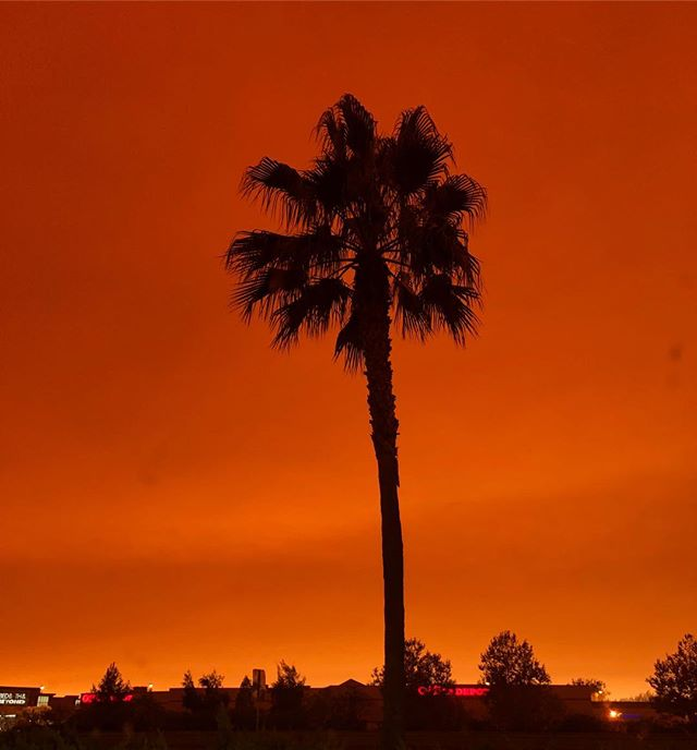 Conditions here's are not great. This is not a sunset it's 10:48am in our little town. So much devastation. Please pray🙏. That's all. #campfire