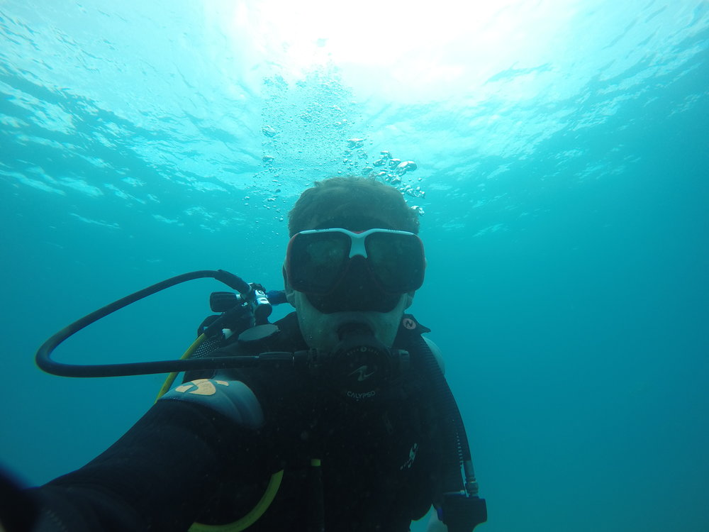 Angel Shark Research - Fuerteventura