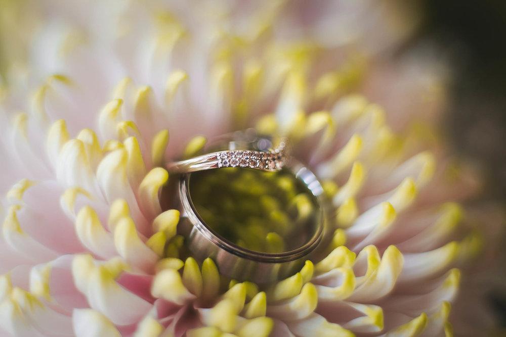 Alan + Nicola Wedding Story 049.jpg