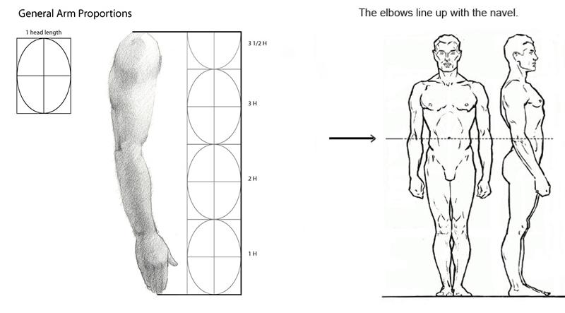 f269730e57737 Understanding proportions when sculpting dolls — Adele Po.