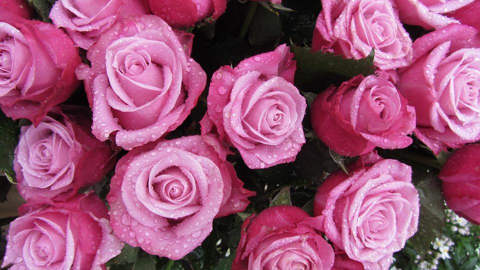 FRESH FLOWER BOUQUETS -