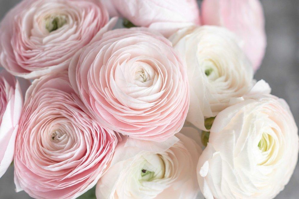 Wedding Flower Price Guide