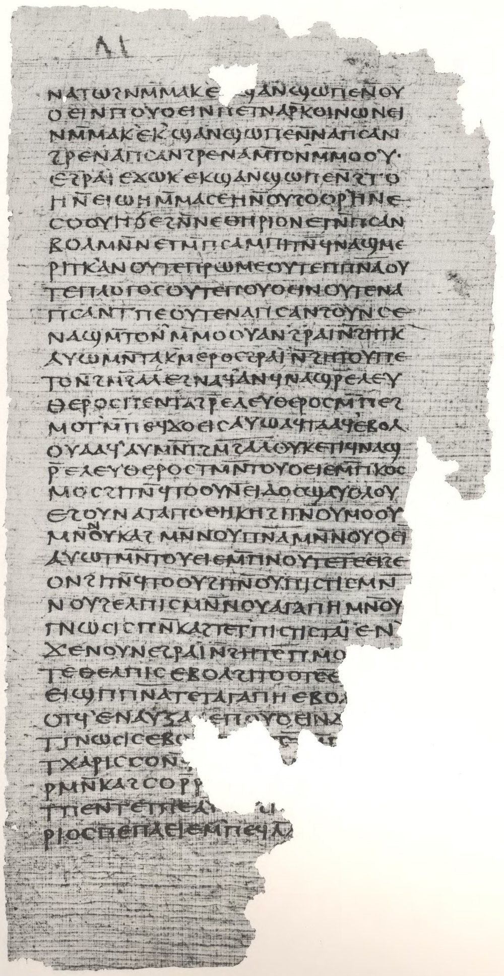 Gospel_of_Philip facsimile_Page_79.jpg