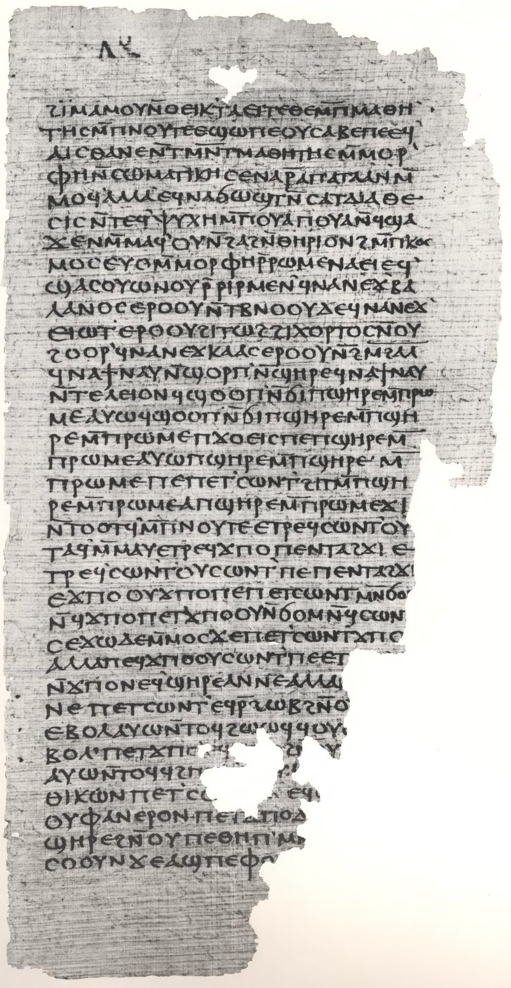 Gospel_of_Philip facsimile_Page_81.jpg