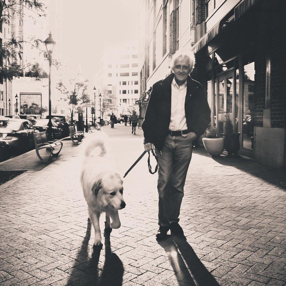 dog-man-pedestrian-10517.jpg