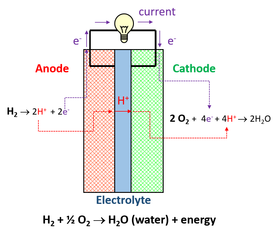 A fuel cell flow showing the pathway of protons, electrons and neutral atoms in a working fuel cell.