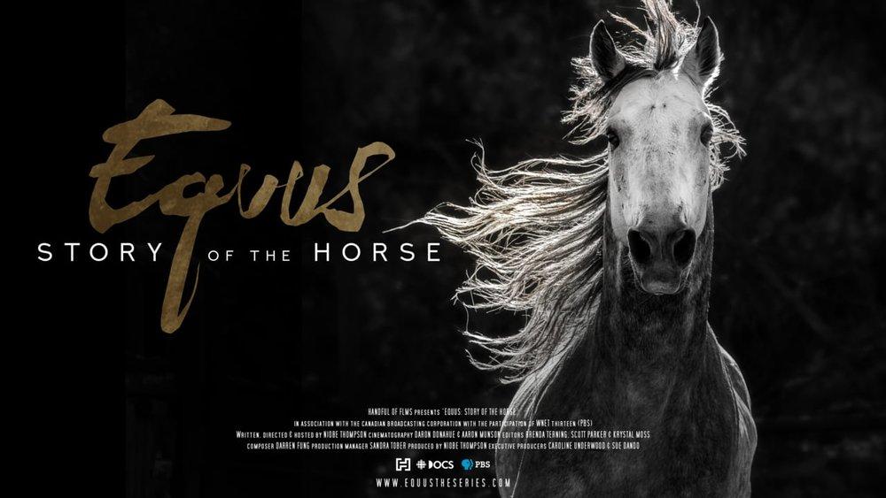 EquusPoster.jpg
