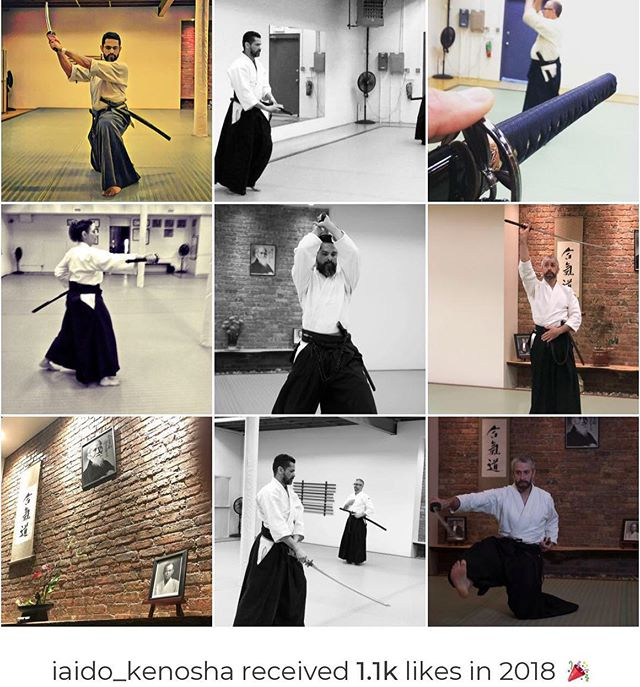 Another year in the books! #Iaido Kenosha has grown in 2018 maintaining our philosophy of continuous improvement. If you're interested in Japanese swordsmanship and meditation in motion, come visit us, maybe Iaido is for you! #topnine2018