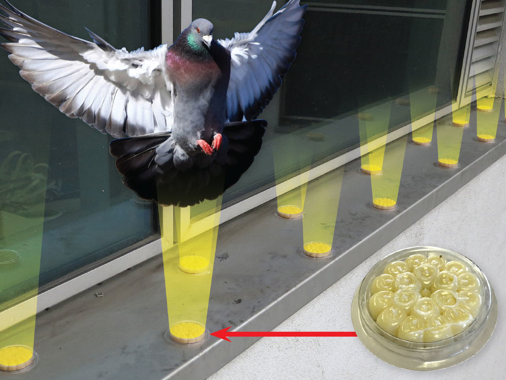 OpticalGel-slide01.jpg