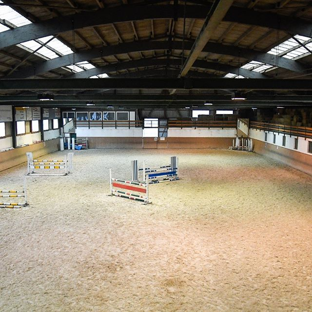 #baholzreitsport #baholz #pferdesport #pferde #horse #horsebackriding